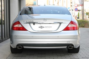 IMG_5394 CLS550